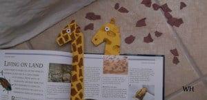Giraffe shapes