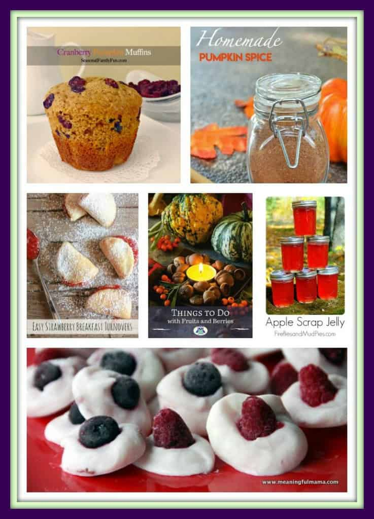 Fruit and Berries Recipes
