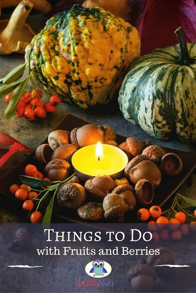 Things to Do with Fruits and Berries