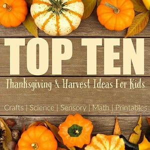 Top Ten Harvest Ideas