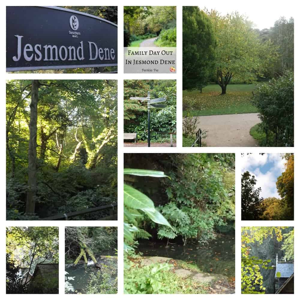 walking-at-jesmond-dene