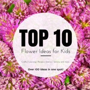 Top 10 Flower Ideas